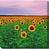 Found it at Wayfair - Sunflowers Art Painting