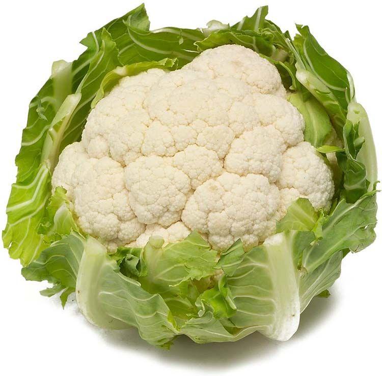 Is bloemkool gezond?Broccoli mag dan wel de meest bekende tak zijn van de familie van de kruisbloemige groenten, maar intussen is ook voldoende wetenschappelijk bewijs opgedoken dat bloemkool eveneens een breed spectrum aan gunstige effecten voor de gezondheid heeft.