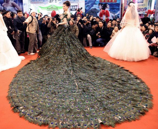 Peacock Feathers Unusual Wedding Dresses Peacock Wedding