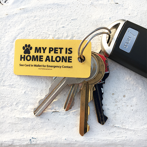 Emergency Pet Keyring Tag With Images Pet Keychain Healthy Pets