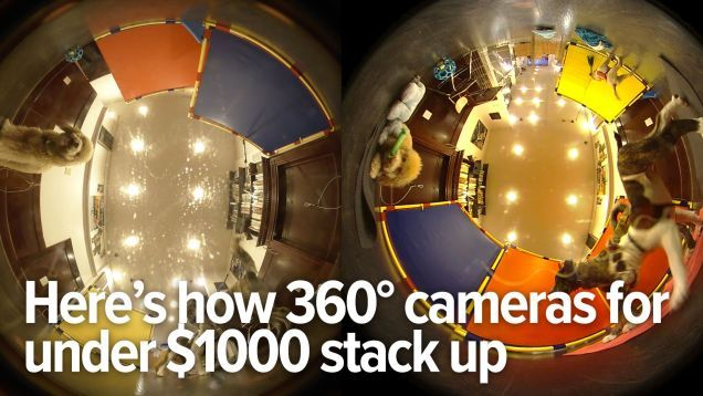 We Tested The Best 360 Degree Cameras Under 1000 360 Camera 360 Degree Camera Puppy School
