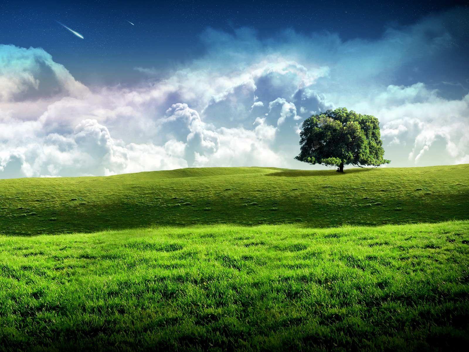 Wallpaper Fondo De Pantalla Verde Imagen Gratis En Pixabay: Paisajes Verdes Hd