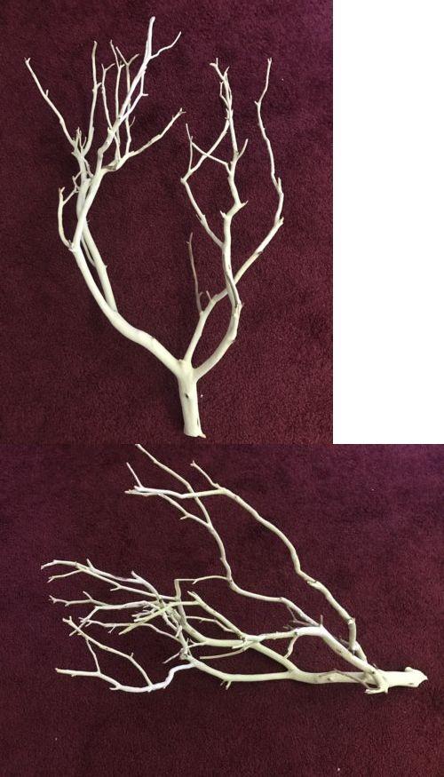 Live Plants 66794: Sandblasted Manzanita Branch -> BUY IT NOW ONLY: $32 on eBay!