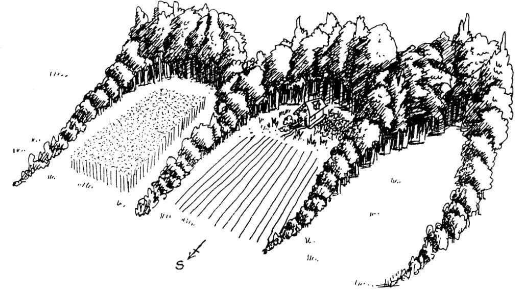Permaculture: un guide complet [PDF]#complet #guide #pdf #