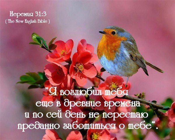 Дню семьи, открытки о любви православные