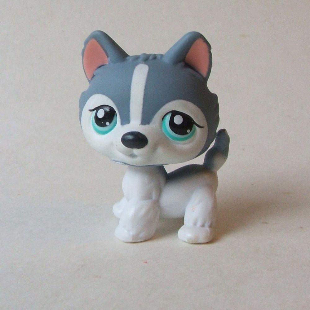 Roller skates for dogs - Hasbro Littlest Pet Shop Lps Gray White Polar Siberian Husky Dog No Aqua Eyes