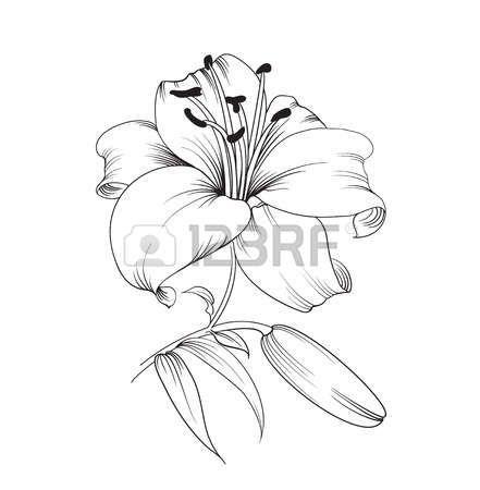R sultat de recherche d 39 images pour modele dessin fleur - Fleurs a dessiner modele ...