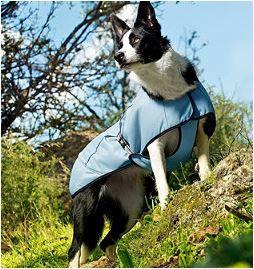 Hurtta Evaporating Cooling Dog Vest Dog Cooling Coat Dog