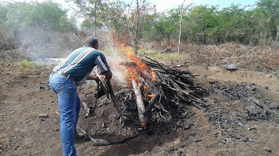 Medio Ambiente destruye horno de carbón en zona fronteriza