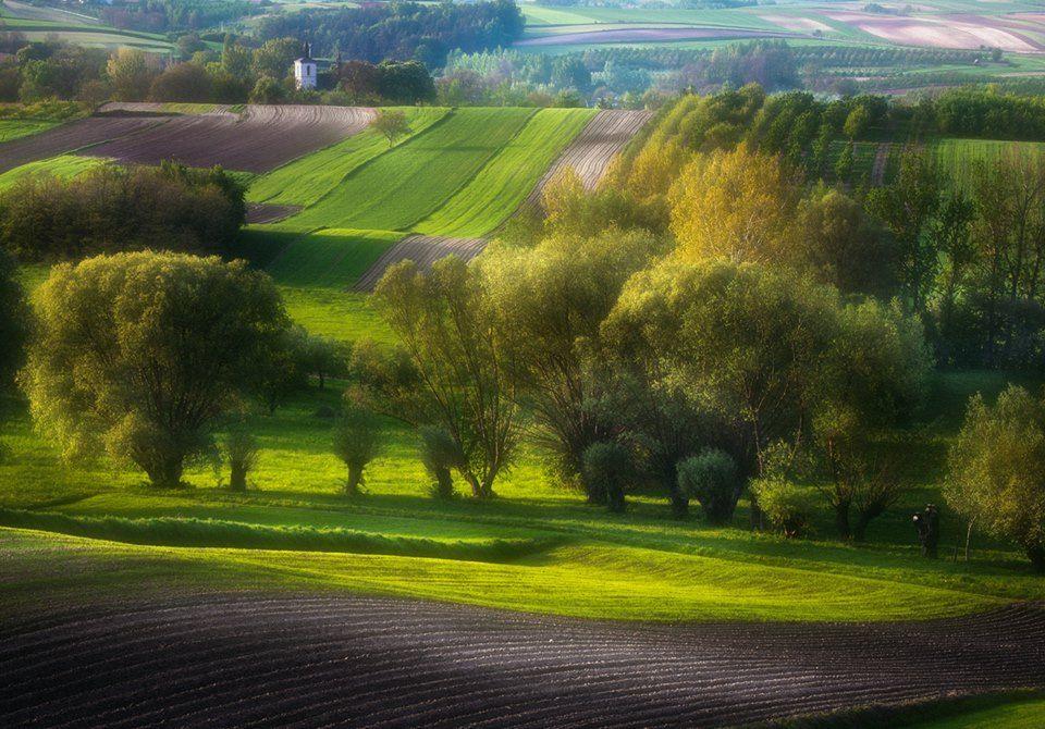 Przemysław Kruk Photography