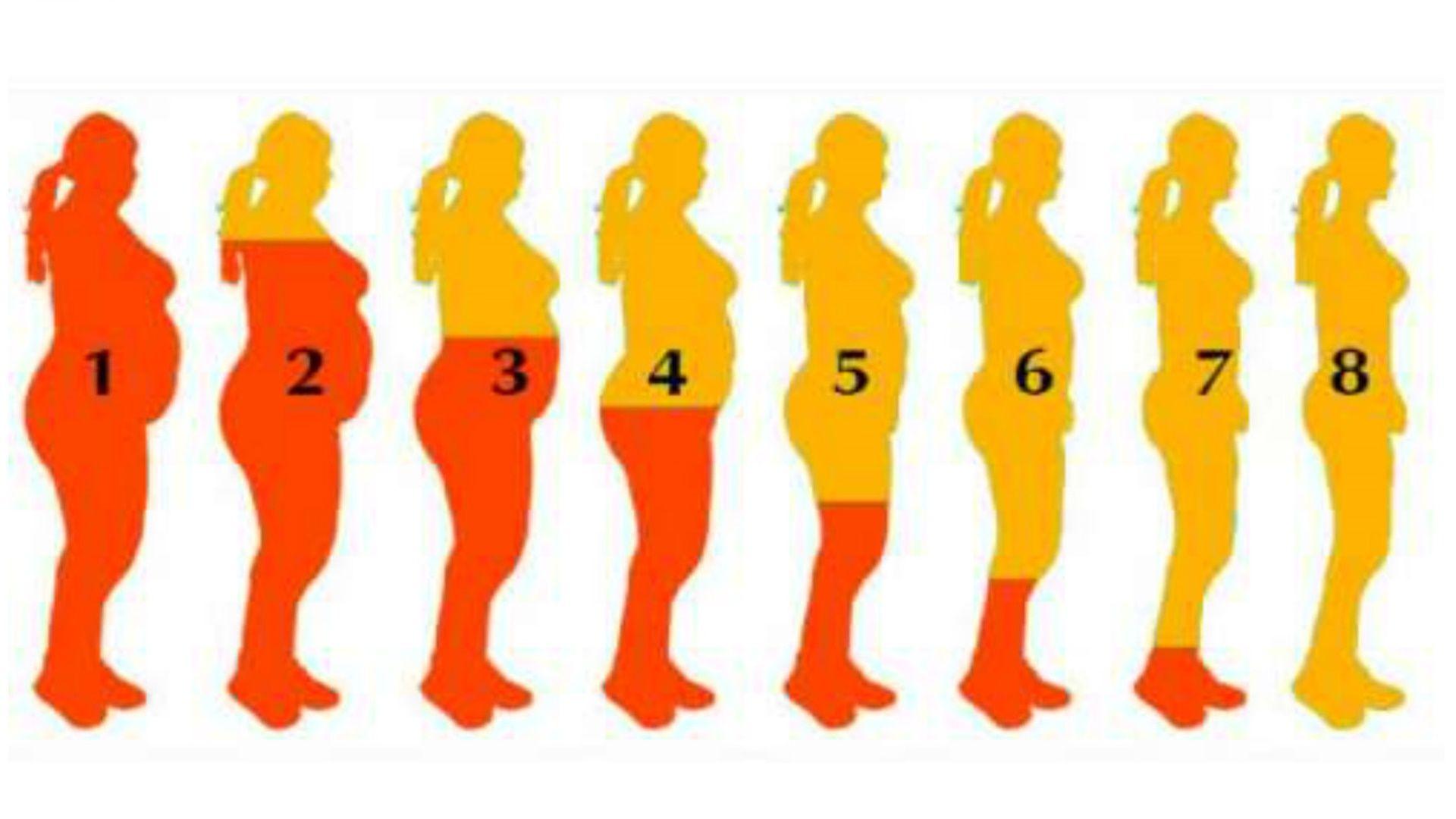 hormona leptina para bajar de peso