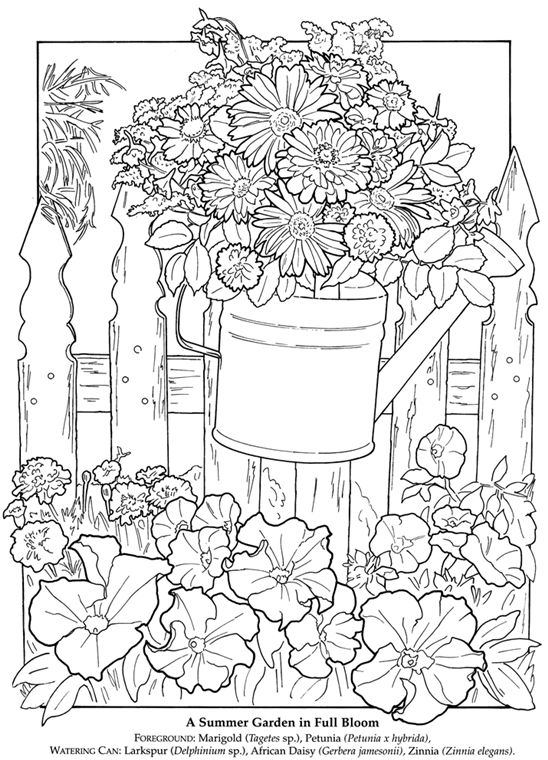 Welcome To Dover Publications Watering Can Flowers Fence Coloring Page