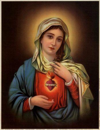 Virgin Mary Sacred Heart Com Imagens Fotos De Nossa Senhora