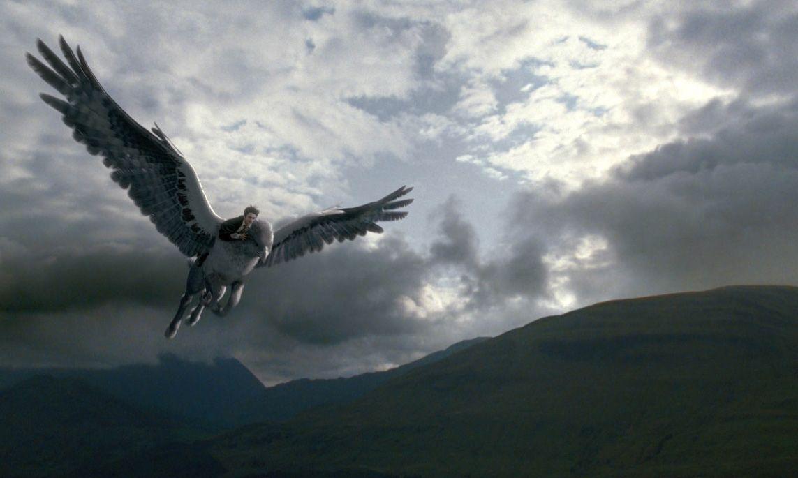 Harry Potter And The Prisoner Of Azkaban Buckbeak