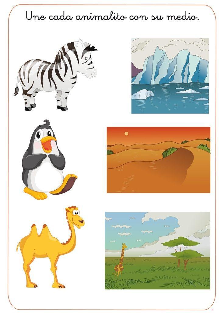 Crafts Actvities And Worksheets For Preschool Toddler And Kindergarten Animal Habitats Worksheets For Kids Habitats Animal habitat worksheets for kindergarten