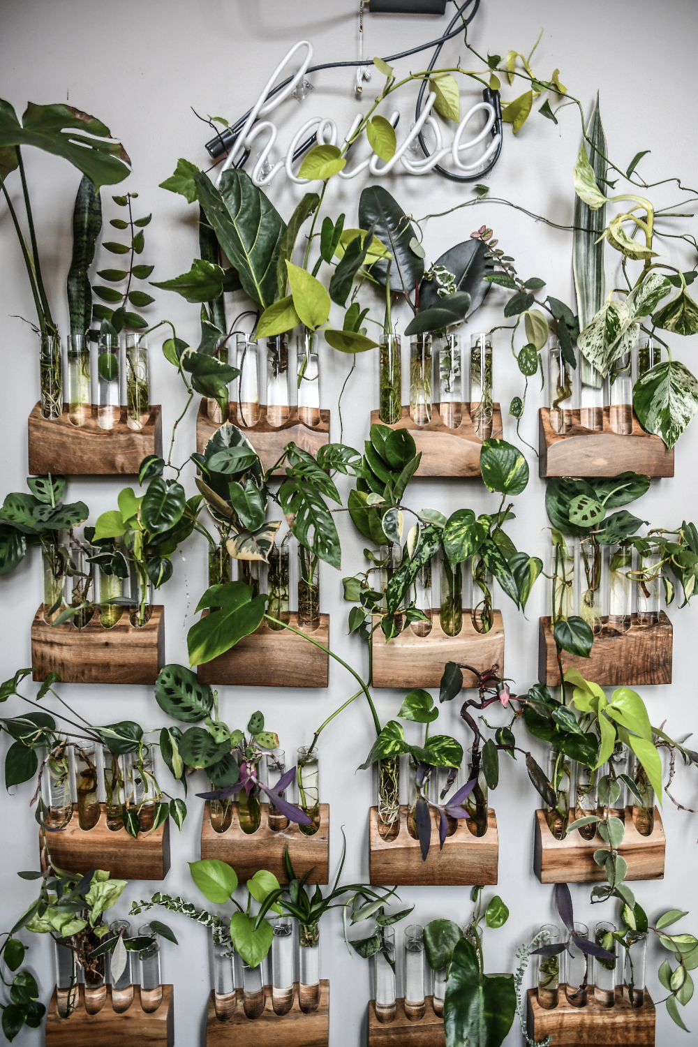 Inside The Home Of An Instagram Famous Plant Stylist Repeller In 2020 Plants Plant Cuttings House Plants Decor