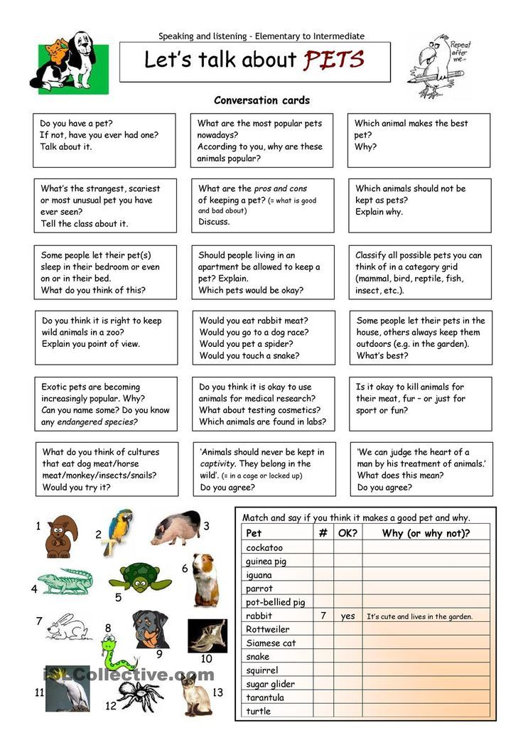 Lets Talk about Pets - Repinned by Chesapeake College Adult Ed. We ...