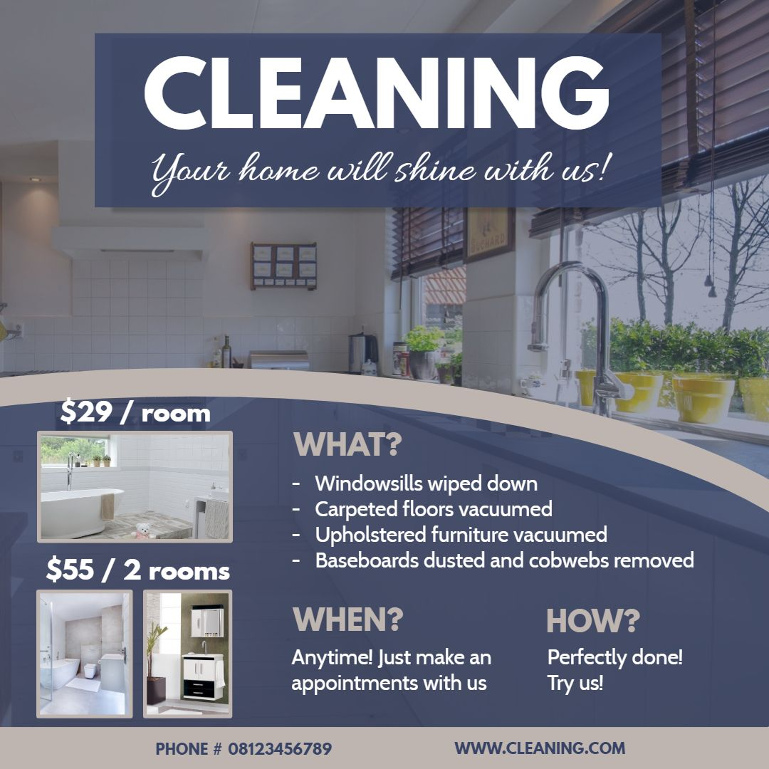 Professional Modern House Cleaning Service Advert Template