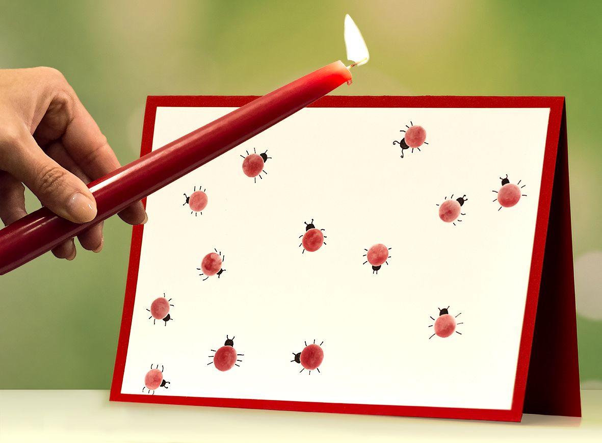 Bastle persönliche Grußkarten mit fröhlichen Marienkäferchen aus ...