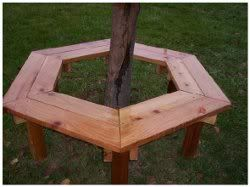 Exceptional Tree Bench