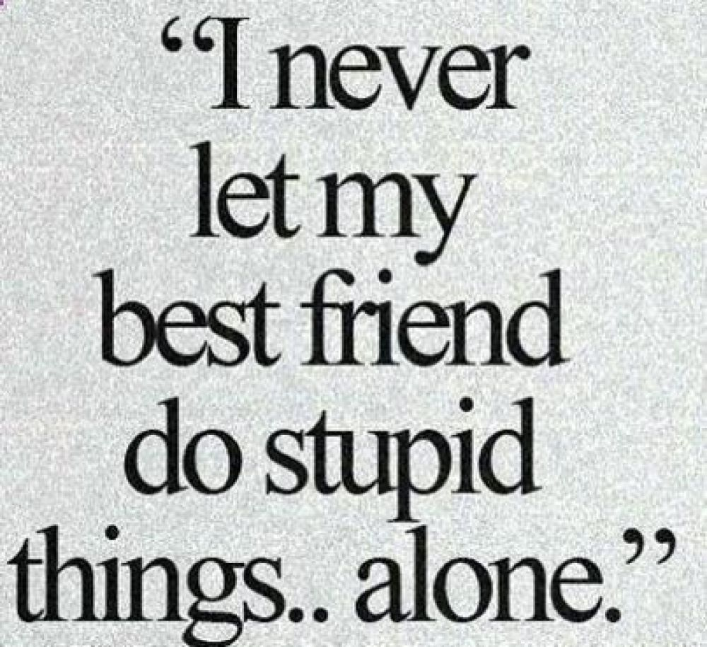20 Cool Friendship Quotes Quoteswithpicture Com Cool Friendship Quotes Pals Are The Household Friends Quotes Funny Friends Quotes Friendship Quotes Funny