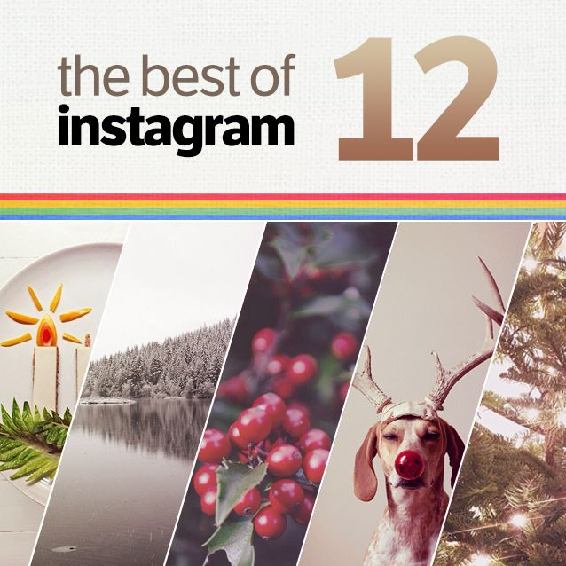 The Best Instagram Users - Round 12 | #instagram #christmas | www.rubbercheese.com