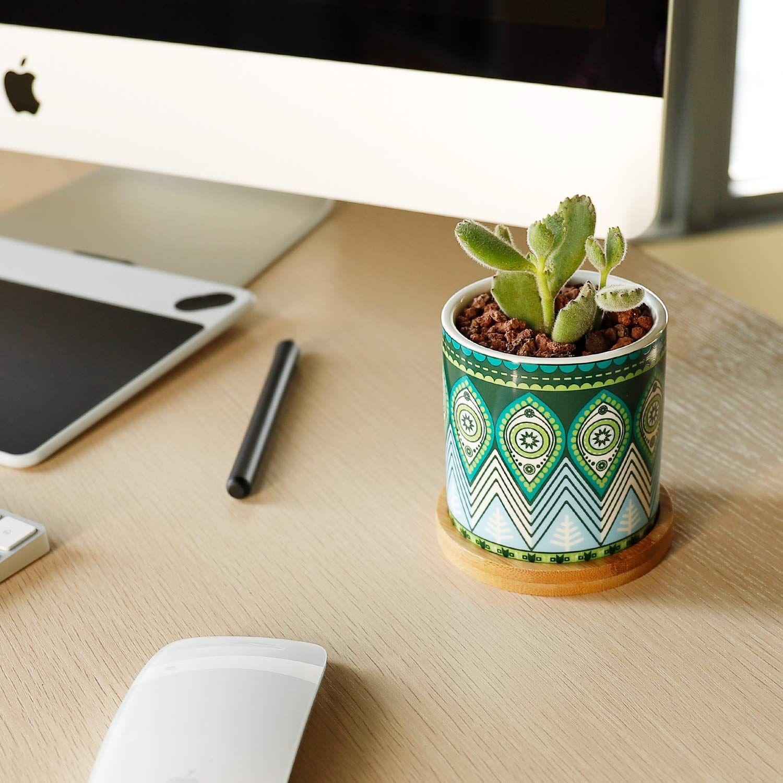 Mini Planter Indoor For Cactus Modern Succulent Planter Succulent Planters Cute Succulent Pots Perfect Pot For Succulents Cactus And Succulent T Patternator