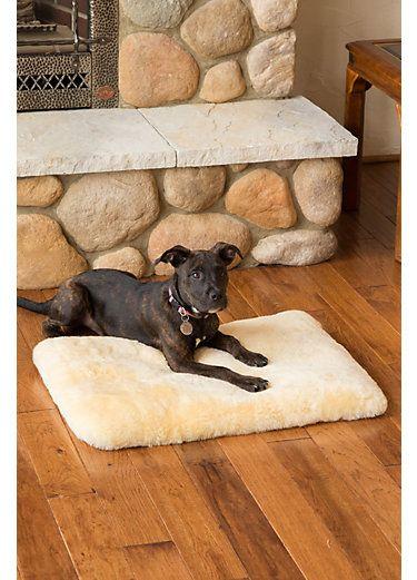 Overland 28 X 20 Small Australian Sheepskin Pet Bed