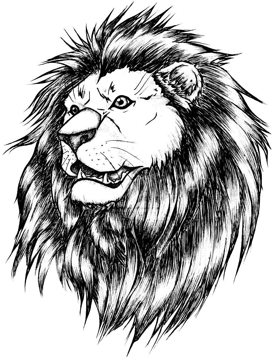 эскизы татуировки лев рисунки тату Lion Tattoo лев эскиз эскиз