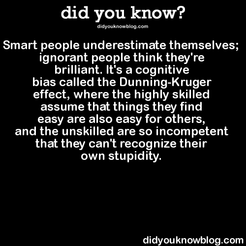 The effects of stupidity
