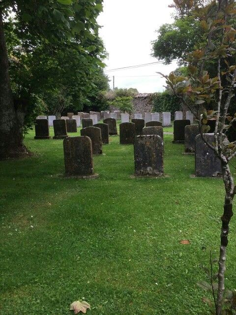 Cemetery in Ireland of our ancestors.