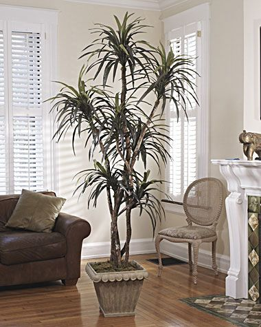 artificial trees for living room cheap table sets realistic 7 ft silk dracaena tree decor 279