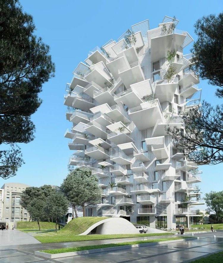 L Arbre Blanc De Montpellier Un Incroyable Immeuble Melant Deux