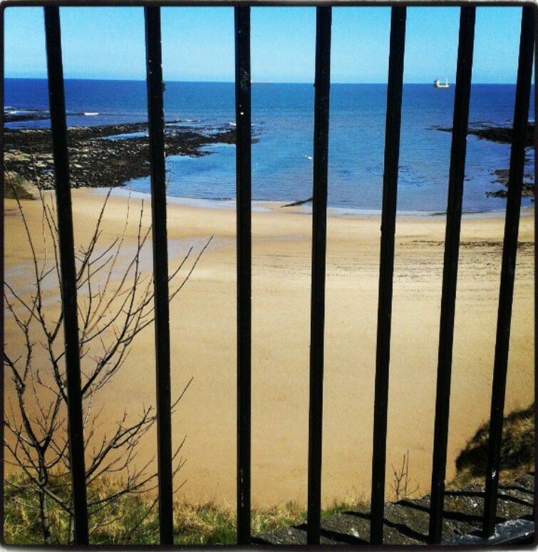 My photo 2013. Cullercoats Bay