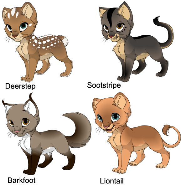 image result for warrior cats coloring pages - Warrior Cat Coloring Pages