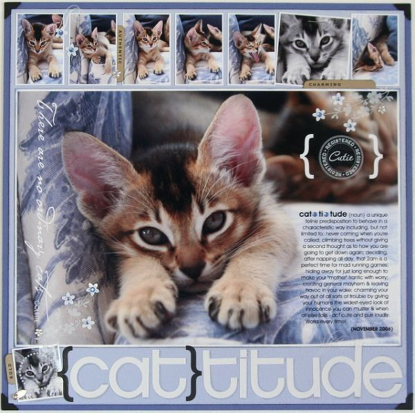 {cat}titude...showcase kitty with a great photo enlargement, a witty definition and a film strip of pics...so cute!