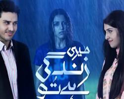 Meri Zindagi Hai Tu Songs Lyrics ft Shabnam Majeed