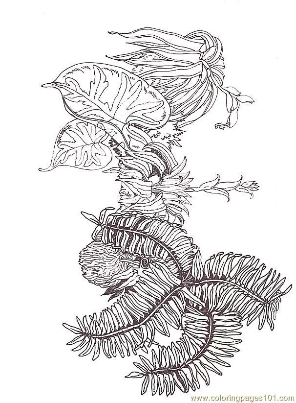Coloring Fern Branch Segment Reverse Coloring Page Free