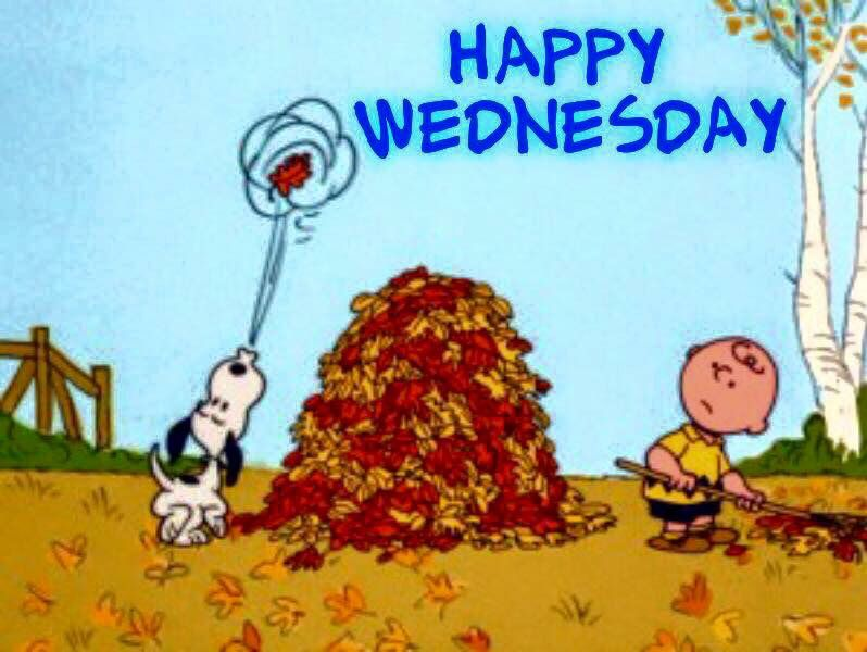 Fall Snoopy Wednesday Pictures, Photos, And Images For Facebook, Tumblr, Pinterest, And Twitter