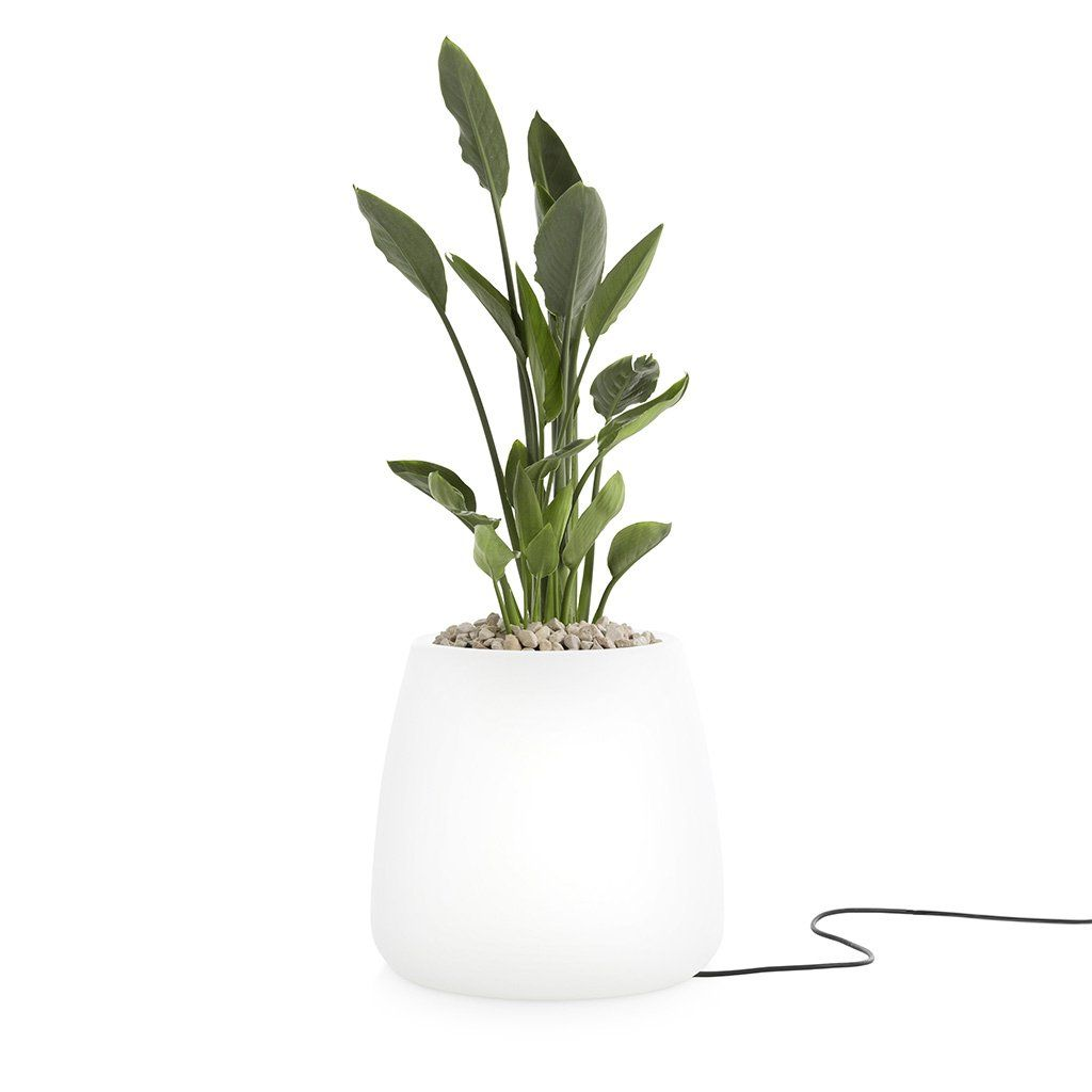 Beleuchteter Blumentopf Gobi 1 Diabla Light Lightingdesign Outdoor Design Outdoorliving Leuchten Lampen Flowersgarden Blumentopf Leuchten Design