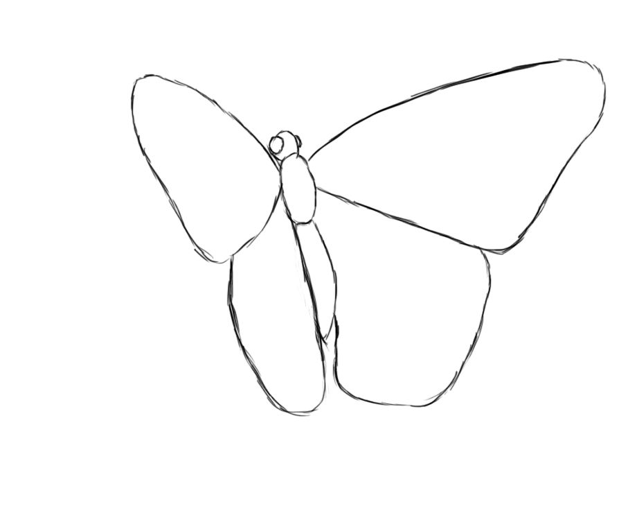 how to draw a butterfly butterfly drawing butterfly and