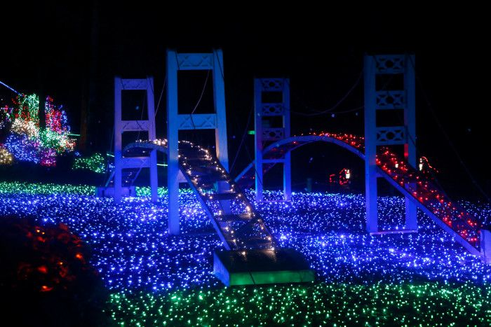 Here Are The 12 Best Christmas Light Displays In Washington. They're  Incredible.   ⚠BIKER4LIFE⚠   Pinterest   Pacific northwest - Here Are The 12 Best Christmas Light Displays In Washington. They're
