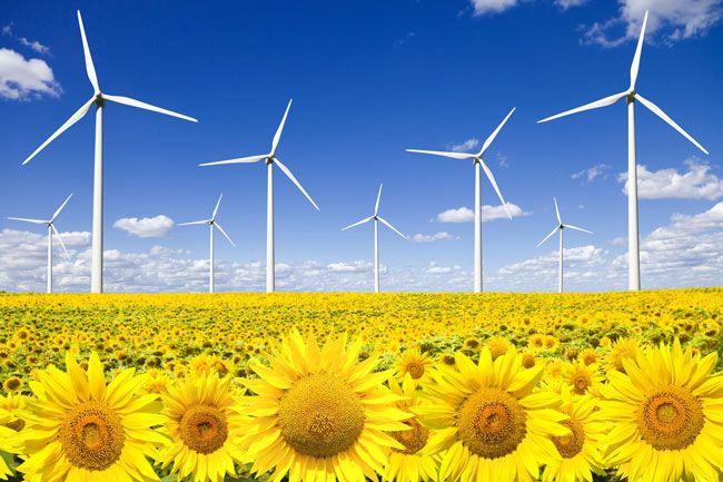 Energía renovables brindan un respiro para cambio climático - http://notimundo.com.mx/politica/politica-energia-renovables-brindan-un-respiro-para-cambio-climatico-773