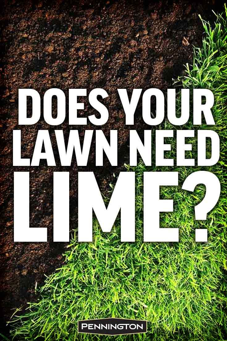 Why When And How To Apply Lime To Your Lawn Reseeding Lawn Lawn Fertilizer Lawn Sprinklers