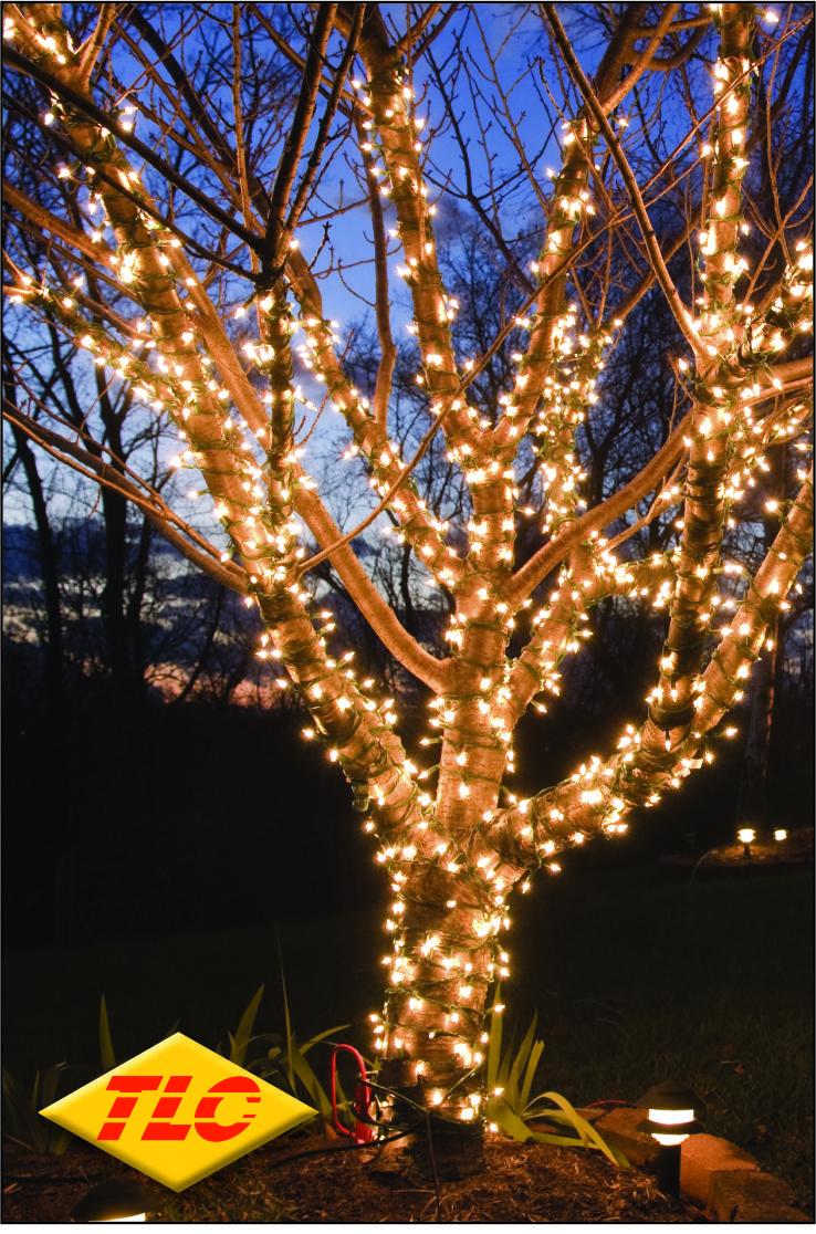 High Quality Multi Function Or Static Outdoor Led Christmas Lights
