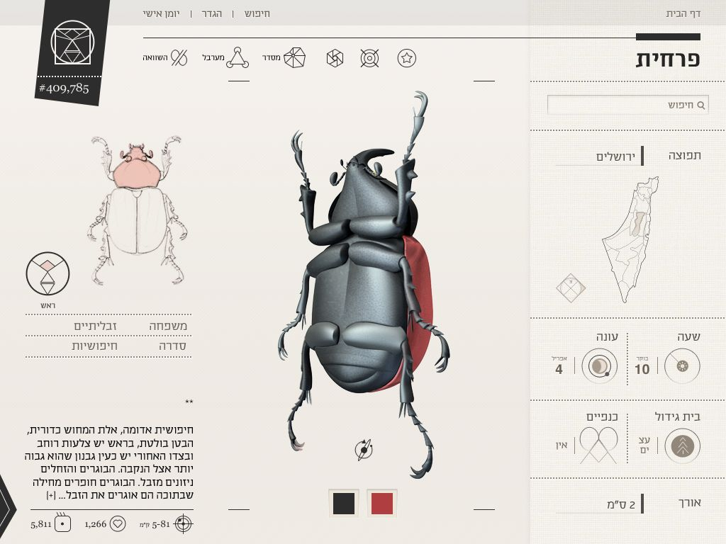 Pin on Insect Infographics
