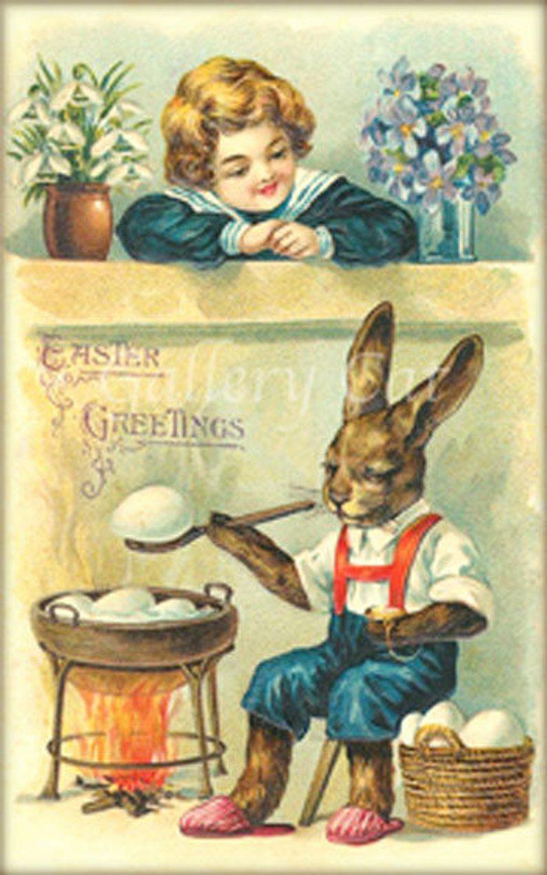 LAPIN VINTAGE | Pâques vintage, Bébés animaux de la ferme et Carte ...