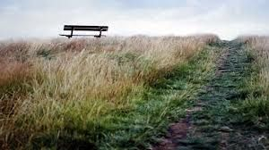 Park Benches on Hampstead Heath - Google Search