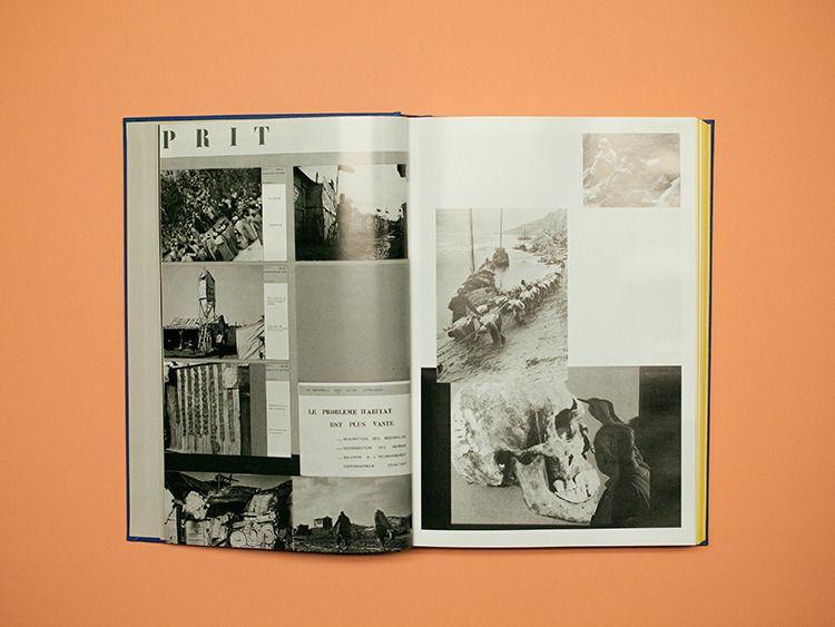 Human Snapshot – Raquel Pinto