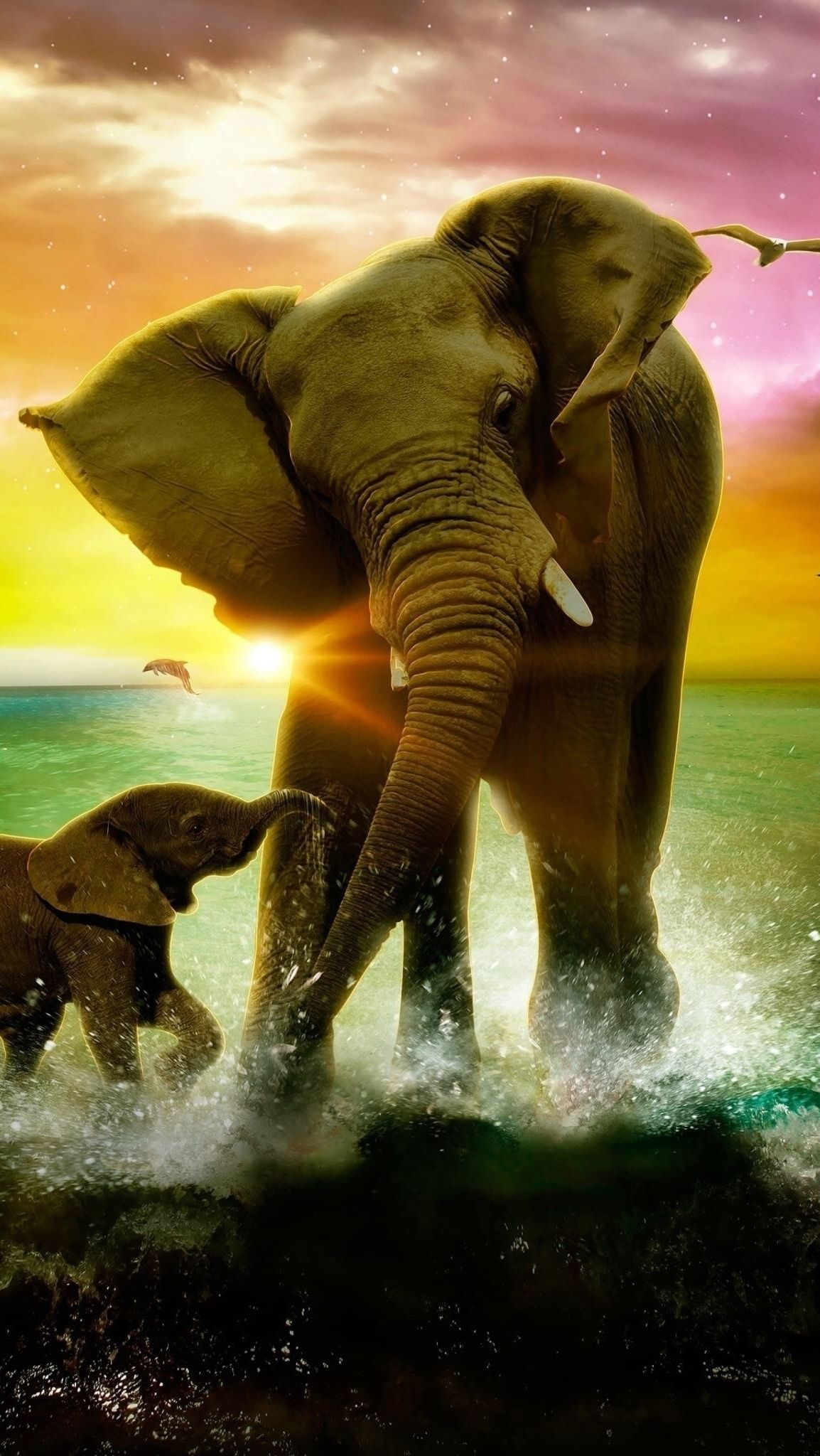 Hd iphone wallpaper wallpapers elephant wallpaper - Elephant background iphone ...